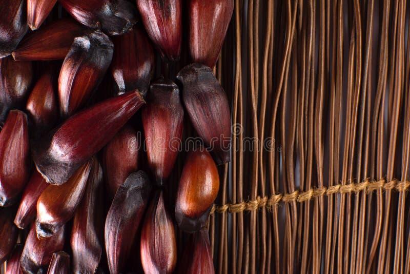 Frutta brasiliana del pignone nel fondo di legno nel lato del telaio visto da sopra immagini stock