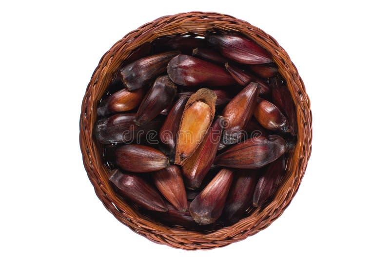 Frutta brasiliana isolata del pignone in un canestro di legno con un aperto visto da sopra immagini stock