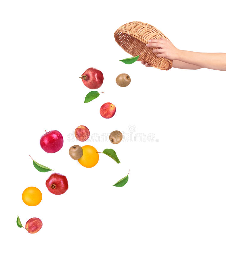 Frutta che cade dal canestro immagine stock