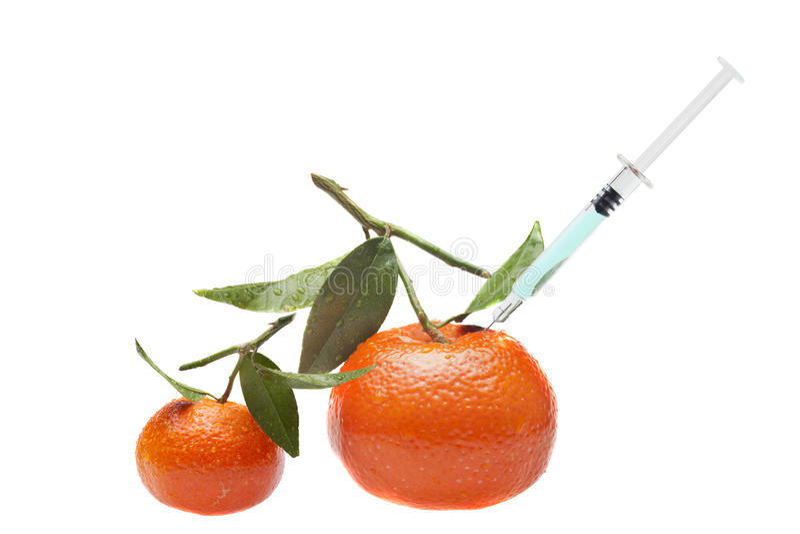 Frutta del GMO - modifica genetica immagine stock libera da diritti