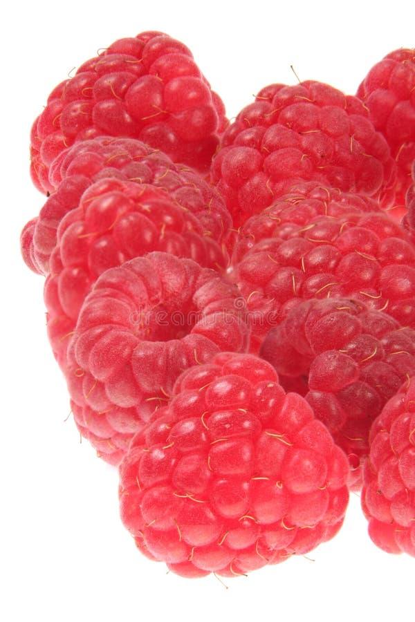 Frutta del lampone fotografie stock libere da diritti
