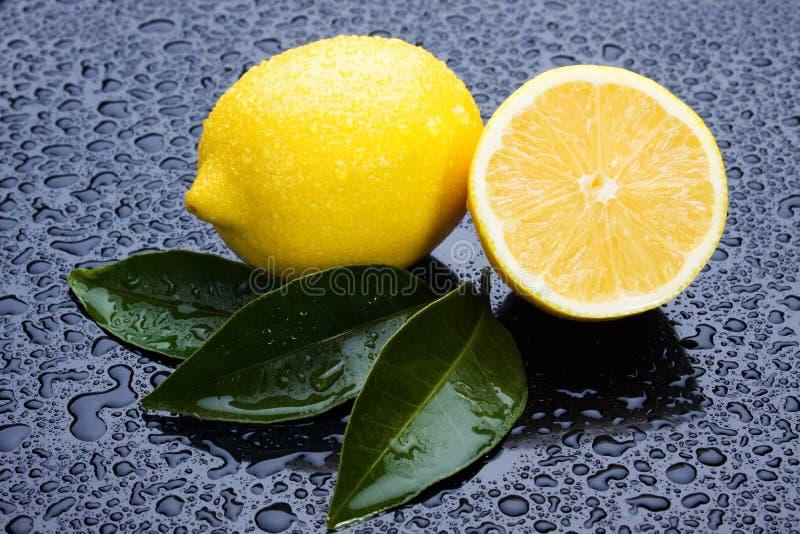 Frutta del limone immagine stock