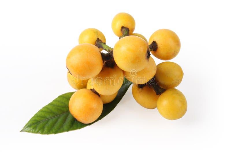 Frutta del Loquat immagini stock libere da diritti