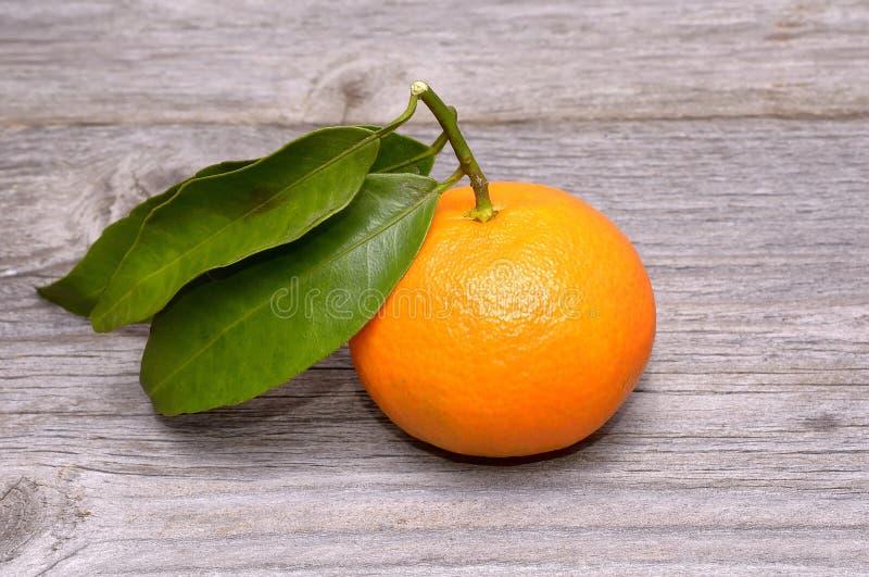 Frutta del mandarino o del mandarino immagine stock