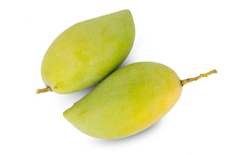 Frutta del mango isolata su fondo bianco fotografia stock