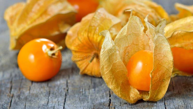 Frutta del Physalis fotografia stock libera da diritti