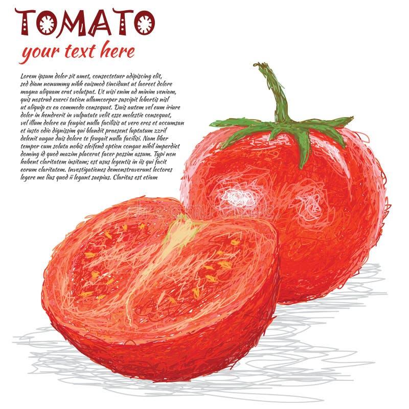 Frutta del pomodoro illustrazione vettoriale