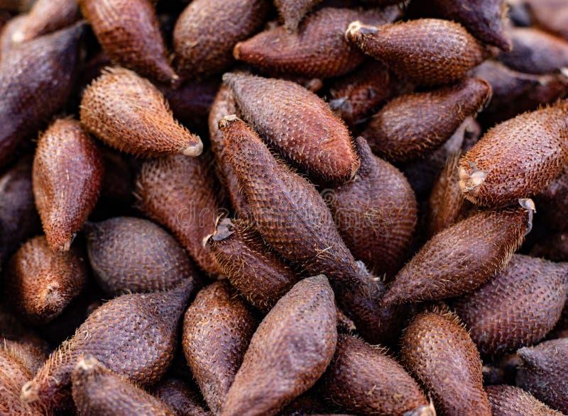Frutta del serpente Frutta esotica immagine stock libera da diritti