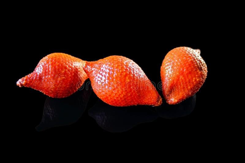 Frutta del serpente, frutti della pelle di serpente immagine stock