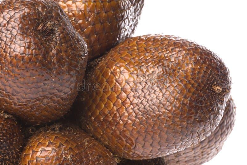 Frutta del serpente isolata fotografie stock