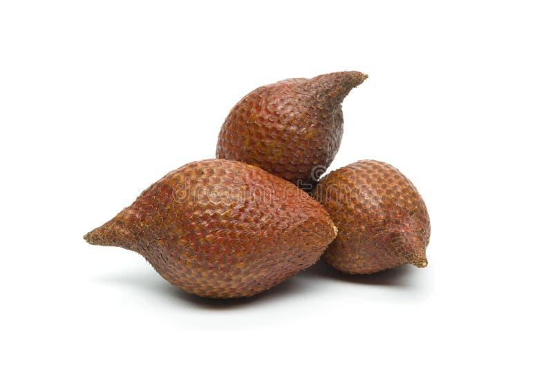 Frutta del serpente isolata su bianco fotografie stock libere da diritti