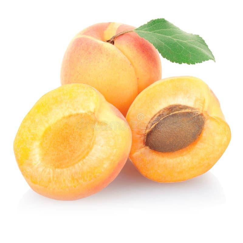 Frutta dell'albicocca con il foglio immagine stock libera da diritti