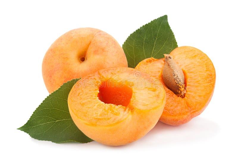 Frutta dell'albicocca su bianco immagini stock