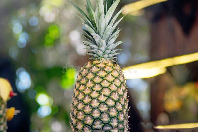 Frutta dell'ananas contro le luci della sfuocatura immagini stock libere da diritti