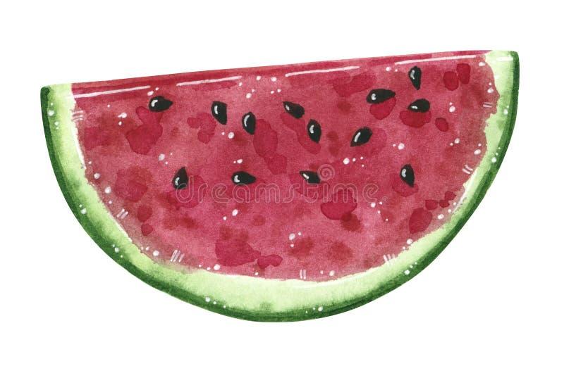Frutta dell'anguria, mezza fetta, illustrazione dell'acquerello royalty illustrazione gratis