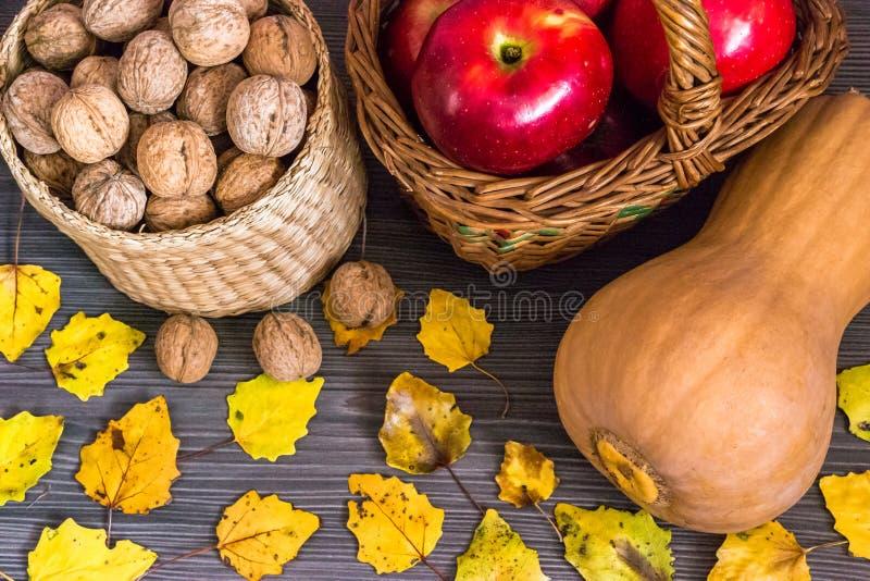 Frutta dell'autunno fotografia stock libera da diritti