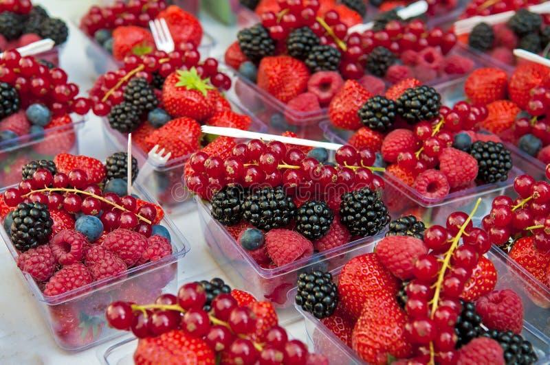 Frutta della foresta immagini stock