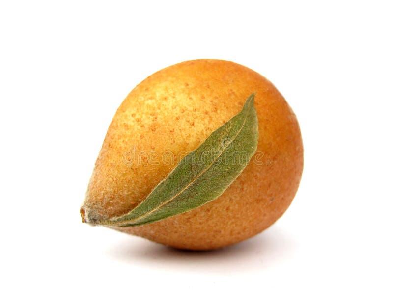 Frutta della nespola immagini stock