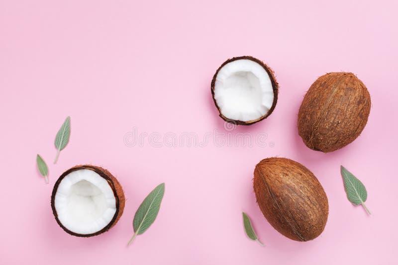 Frutta della noce di cocco intera e mezza sulla vista superiore del fondo pastello rosa stile piano di disposizione fotografie stock