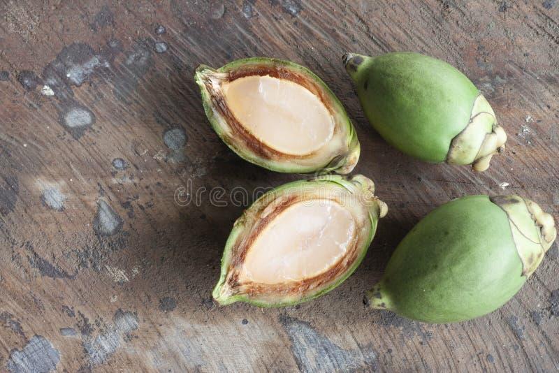 frutta della palma della coda di volpe fotografia stock libera da diritti