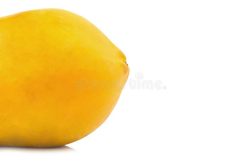 Frutta della papaia intestazione del primo piano Arancia di colore Asiatico Isolato su bianco fotografia stock libera da diritti