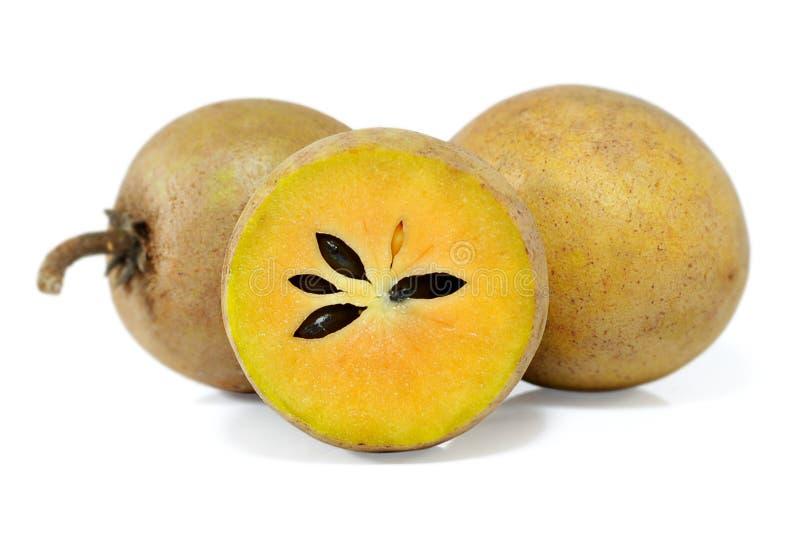 Frutta della sapota isolata su fondo bianco fotografie stock libere da diritti