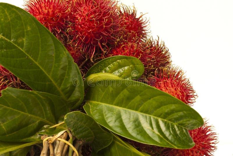 Frutta della Tailandia immagine stock