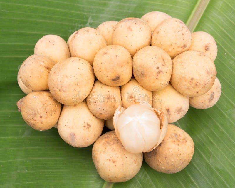 Frutta della Tailandia wollongong fotografia stock