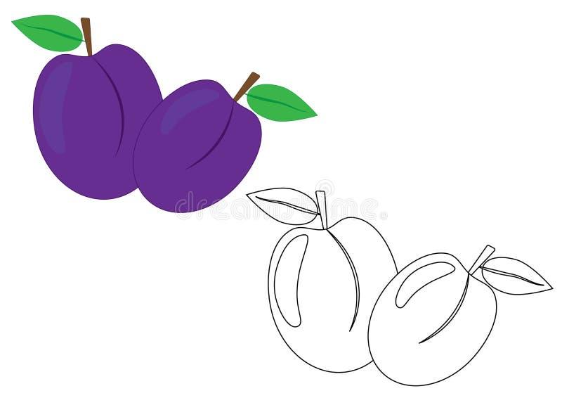 Frutta delle prugne, pagina di coloritura Illustrazione di vettore royalty illustrazione gratis