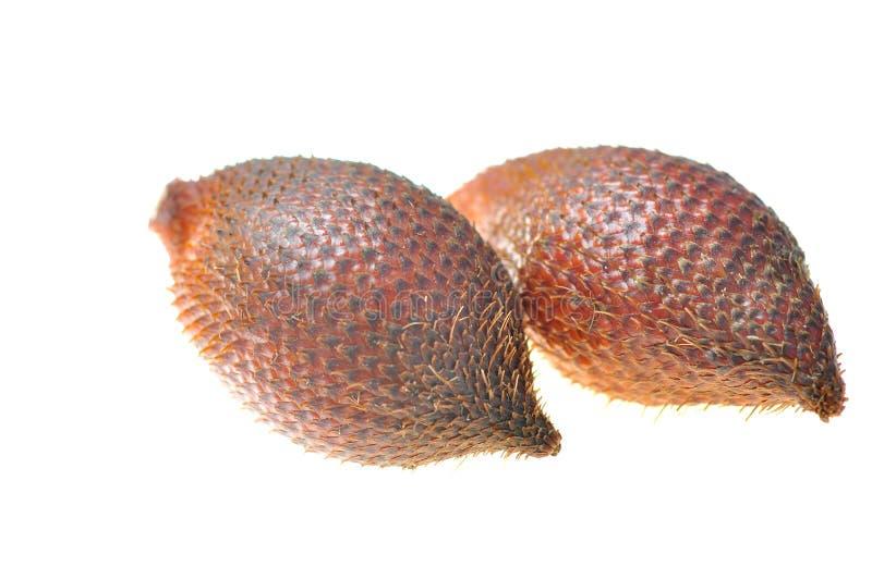 Frutta di colore rosso di Salacca immagine stock libera da diritti