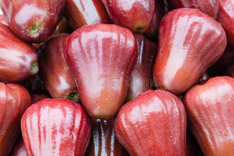 Frutta di Jambu fotografie stock libere da diritti