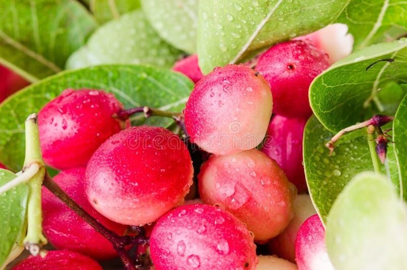 Frutta di Karanda nel mercato tailandese immagine stock