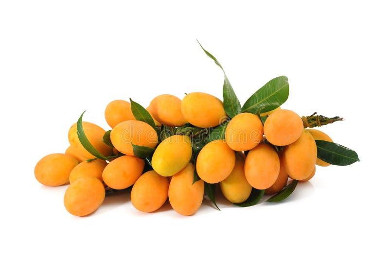 Frutta di Maprang, frutta tailandese fotografia stock libera da diritti