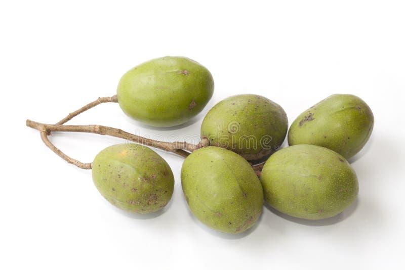 Frutta di spondias dulcis  immagine stock