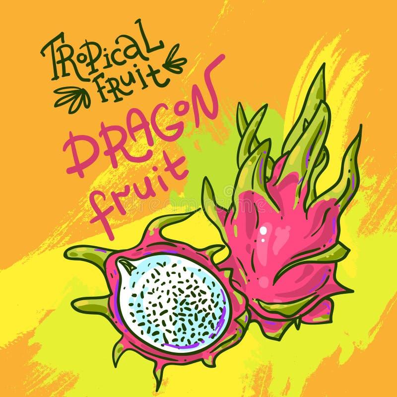 Frutta drwan di vettore della mano royalty illustrazione gratis