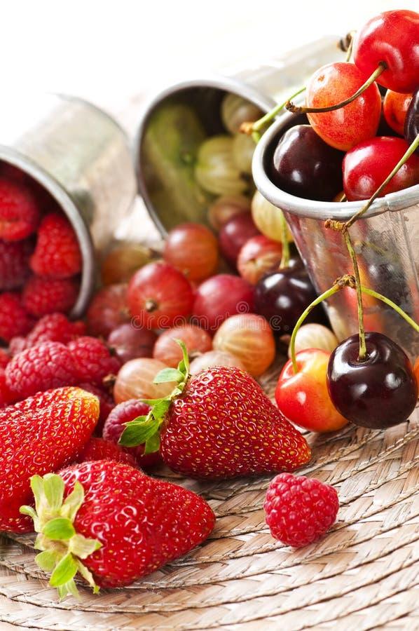 Frutta e bacche fotografia stock libera da diritti