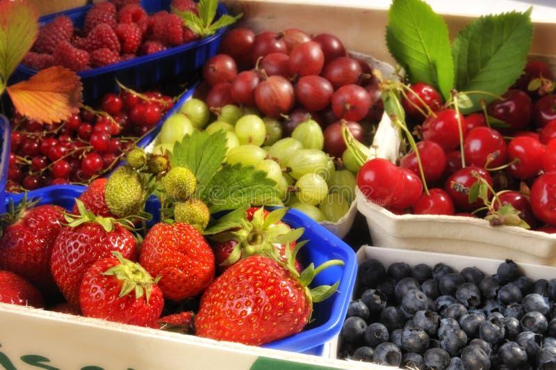 Frutta fresca in cestini fotografia stock libera da diritti