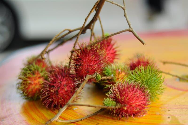 Frutta fresca del Rambutan (nephelium lappaceum) immagine stock libera da diritti