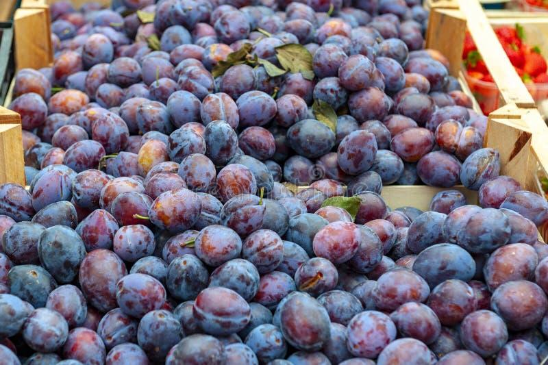 Frutta fresca delle prugne vendute al mercato in Germania fotografia stock
