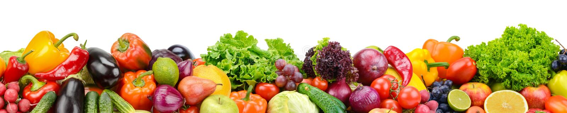 Frutta fresca e verdure della raccolta panoramica per l'iso di skinali fotografia stock libera da diritti