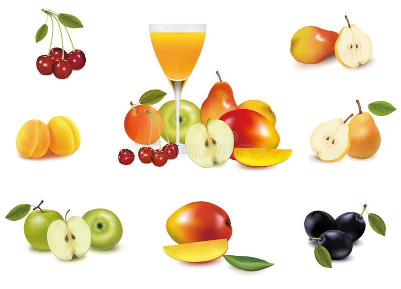 Frutta fresca e vetro di spremuta. Vettore illustrazione di stock