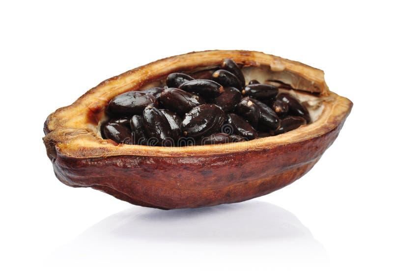 Frutta fresca i del cacao immagine stock libera da diritti