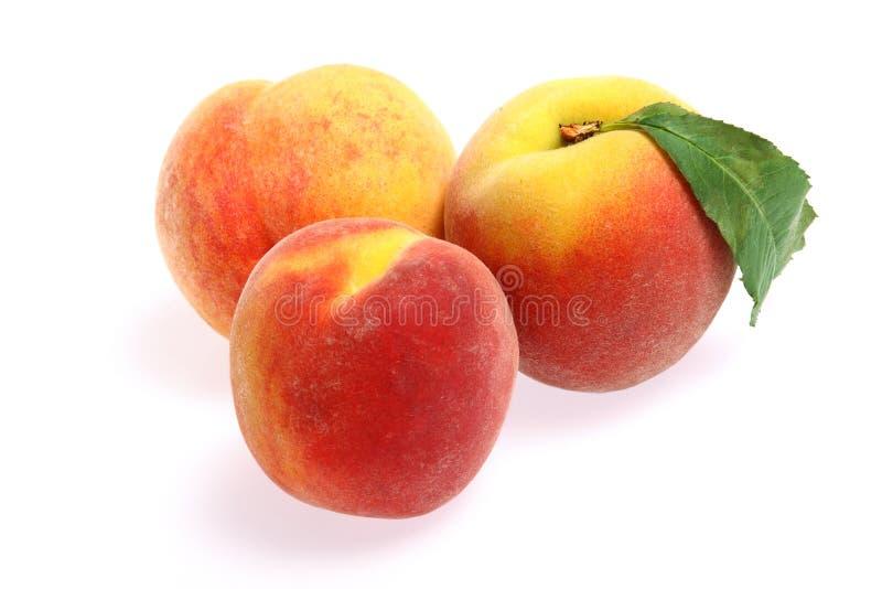 Frutta fresca - pesche isolate su priorità bassa bianca immagini stock