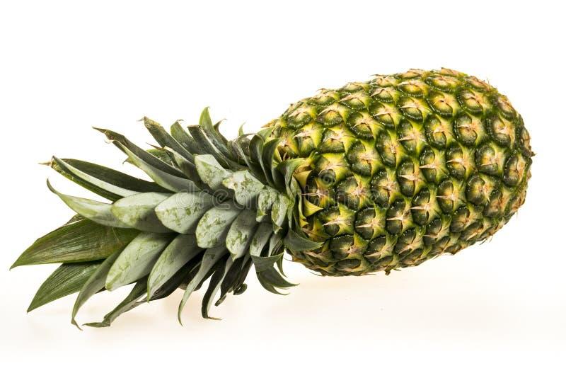 Frutta isolata dell'ananas immagine stock