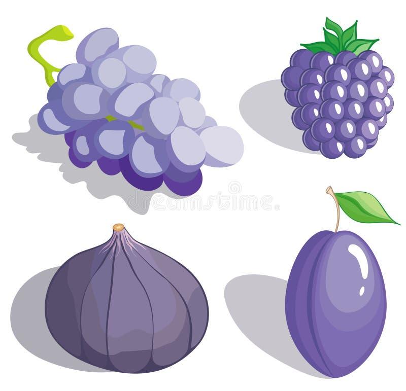 Frutta lilla illustrazione vettoriale