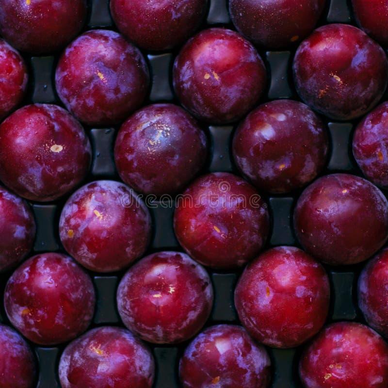 Frutta matura e albero-fresca pronta per trasporto o consumo fotografie stock