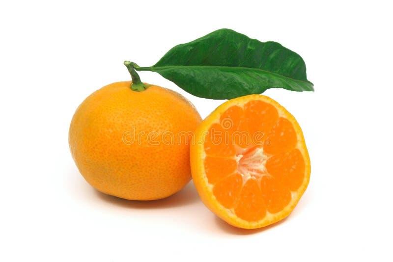 Frutta perfetta del mandarino immagine stock