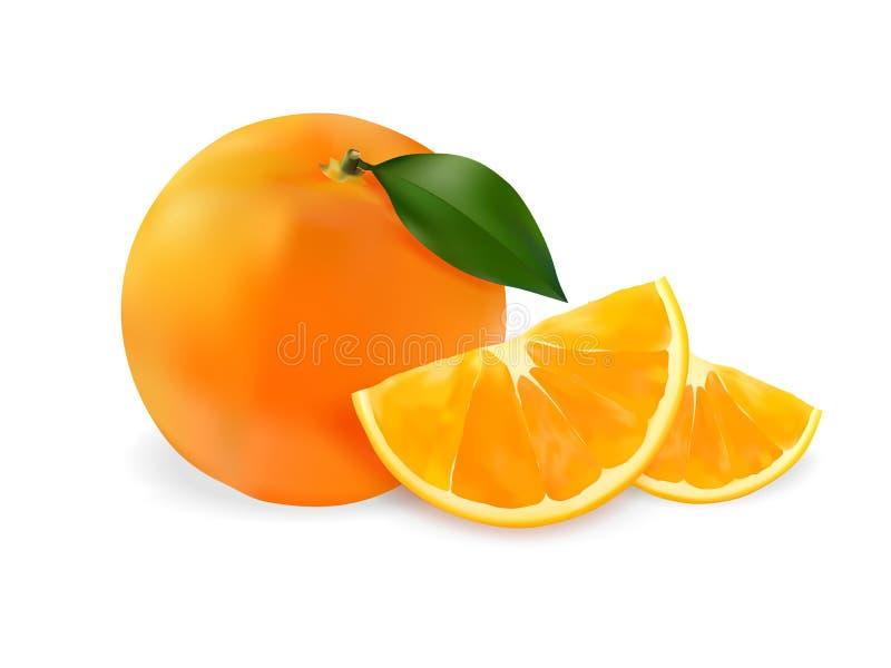 Frutta realistica di Oranfe della frutta fotografie stock
