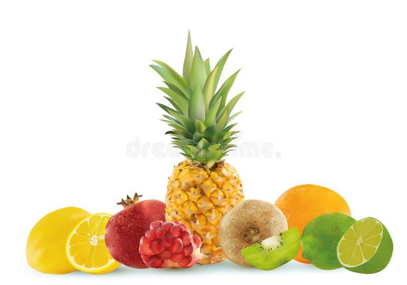 Frutta realistica su un fondo bianco, ananas, limone, kiwi, calce, melograno, arancia Grafici di vettore illustrazione di stock