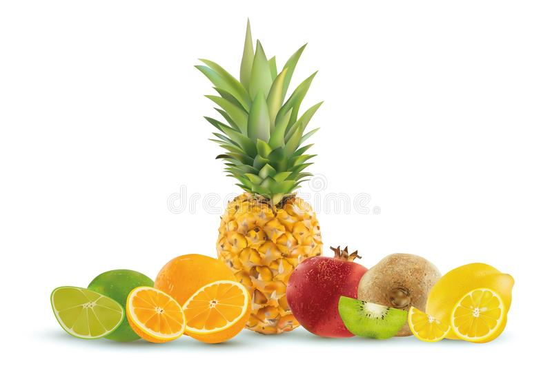 Frutta realistica su un fondo bianco, ananas, limone, kiwi, calce, melograno, arancia Grafici di vettore illustrazione vettoriale